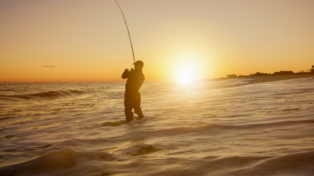 Guide til at begynde på lystfiskeri